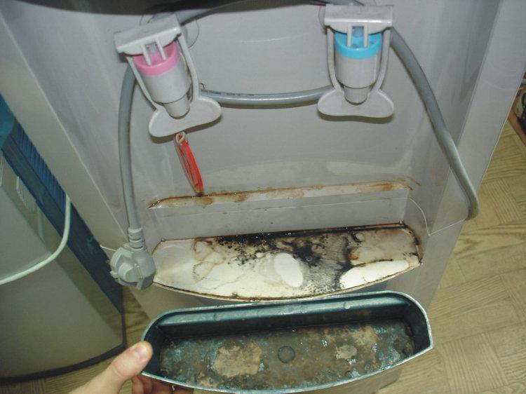 Как чистить кулер для воды в домашних условиях